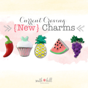 South Hill Designs New Charms